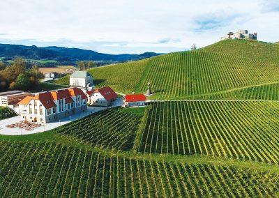 Weingut Taggenbrunn