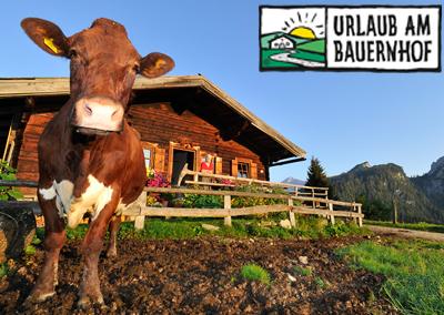 Almhüttenurlaub in Österreich