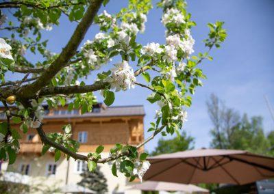 Lebe Pur Resort Hotel Försterhof****